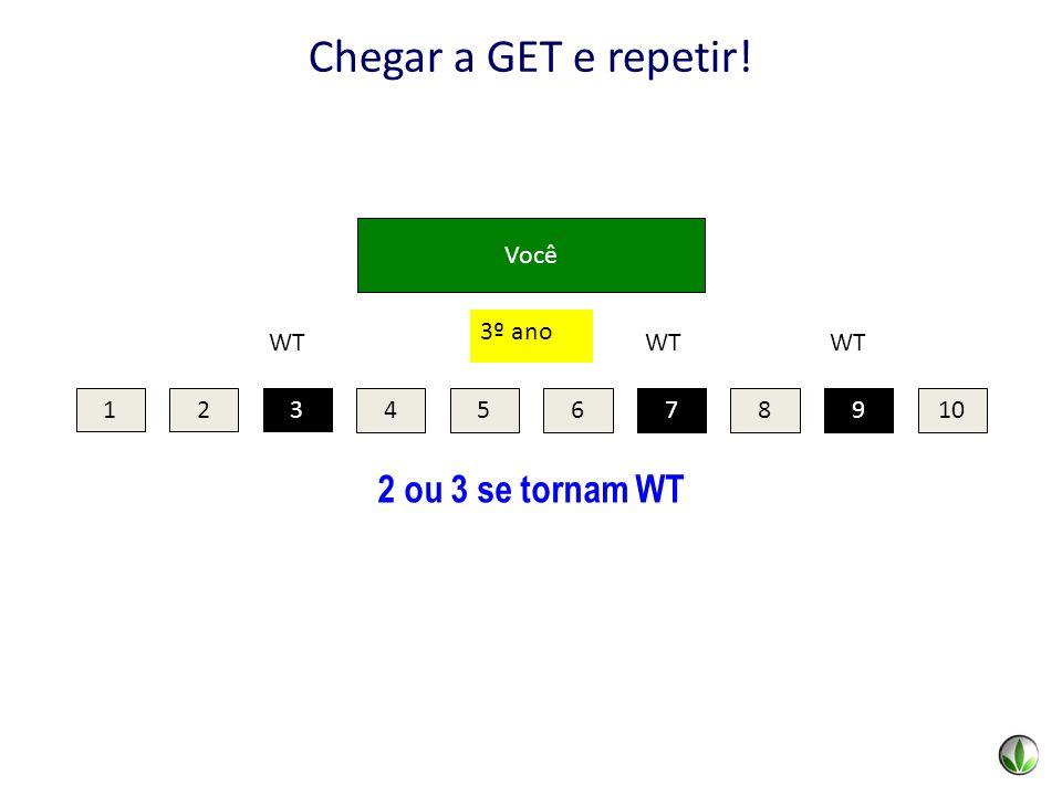 Você 2 ou 3 se tornam WT Chegar a GET e repetir! 123 45678910 79 WT 3 3º ano