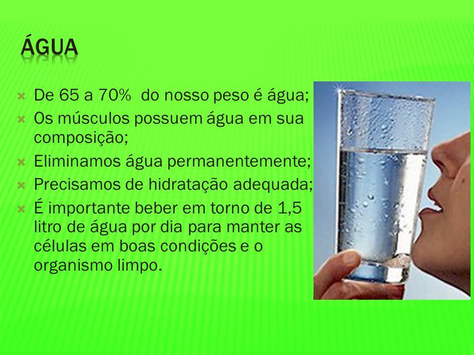 De 65 a 70% do nosso peso é água; Os músculos possuem água em sua composição; Eliminamos água permanentemente; Precisamos de hidratação adequada; É im