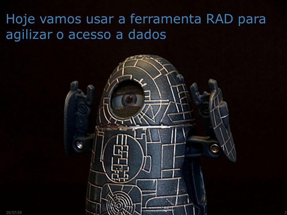 Hoje vamos usar a ferramenta RAD para agilizar o acesso a dados 325/07/09
