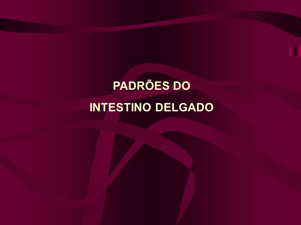 PADRÕES DO INTESTINO DELGADO