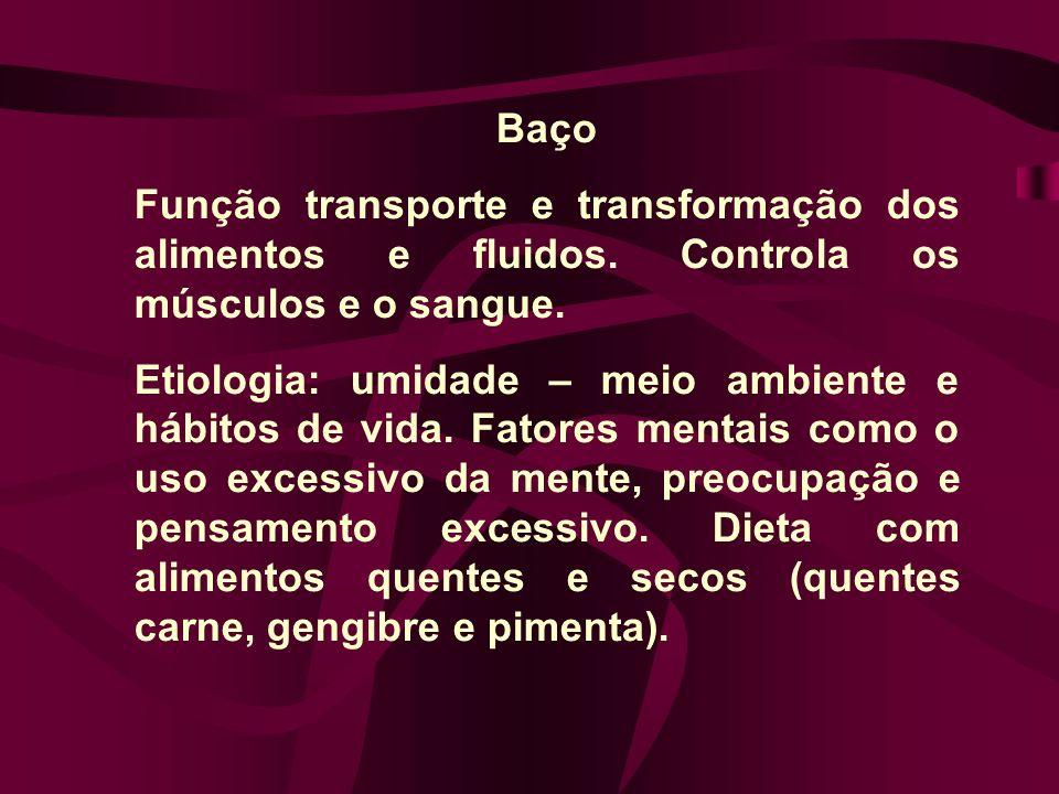 Baço Função transporte e transformação dos alimentos e fluidos. Controla os músculos e o sangue. Etiologia: umidade – meio ambiente e hábitos de vida.