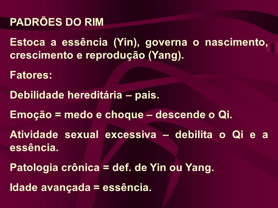 PADRÕES DO RIM Estoca a essência (Yin), governa o nascimento, crescimento e reprodução (Yang).