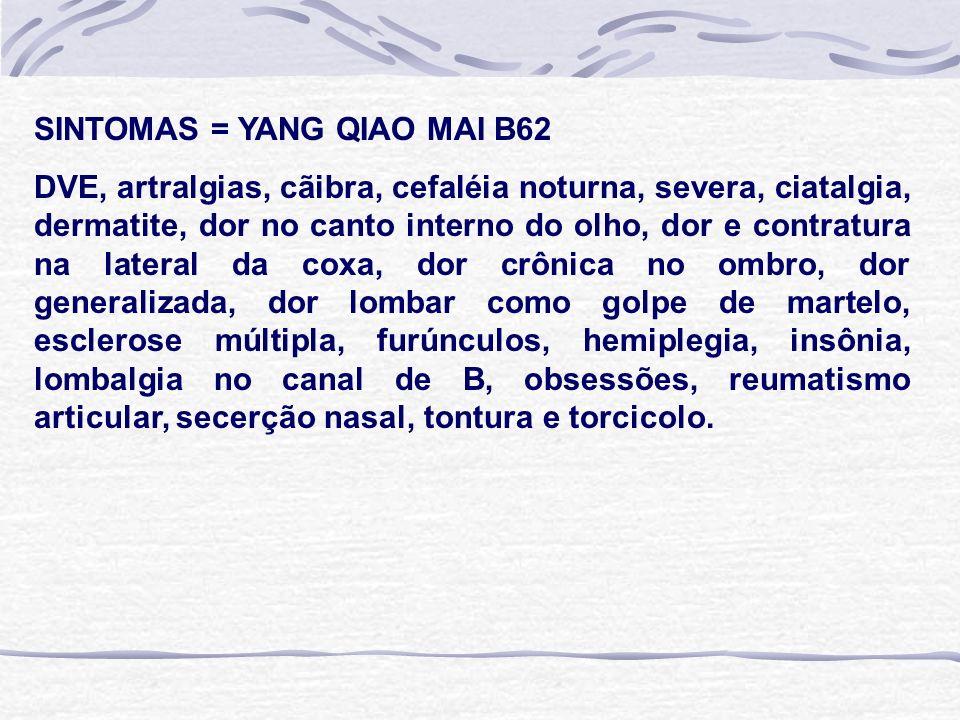 SINTOMAS = YANG QIAO MAI B62 DVE, artralgias, cãibra, cefaléia noturna, severa, ciatalgia, dermatite, dor no canto interno do olho, dor e contratura na lateral da coxa, dor crônica no ombro, dor generalizada, dor lombar como golpe de martelo, esclerose múltipla, furúnculos, hemiplegia, insônia, lombalgia no canal de B, obsessões, reumatismo articular, secerção nasal, tontura e torcicolo.