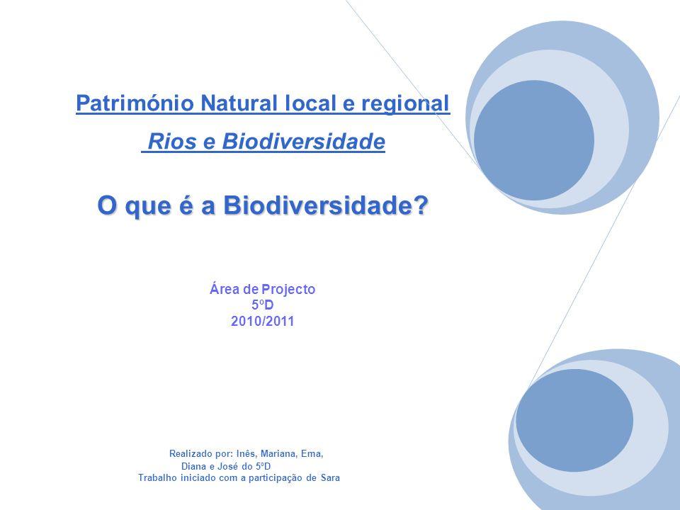 O que é a Biodiversidade? Património Natural local e regional Rios e Biodiversidade O que é a Biodiversidade? Área de Projecto 5ºD 2010/2011 Realizado