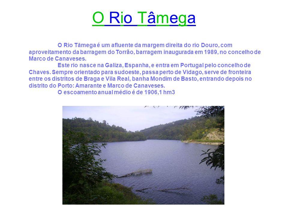 O Rio Tâmega é um afluente da margem direita do rio Douro, com aproveitamento da barragem do Torrão, barragem inaugurada em 1989, no concelho de Marco