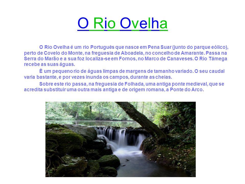 O Rio Ovelha é um rio Português que nasce em Pena Suar (junto do parque eólico), perto de Covelo do Monte, na freguesia de Aboadela, no concelho de Am
