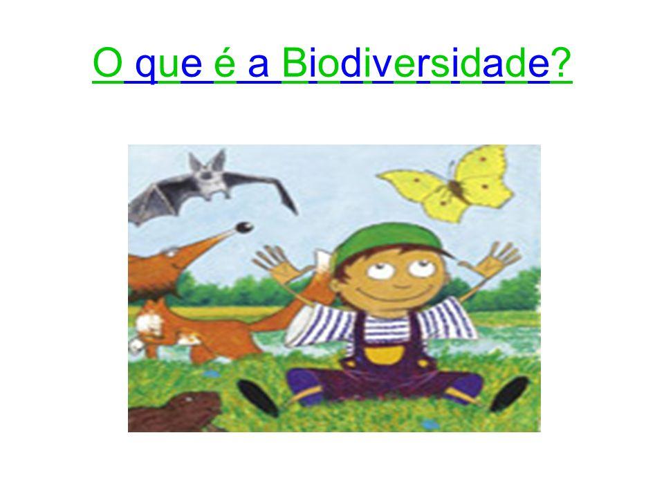 O que é a Biodiversidade?