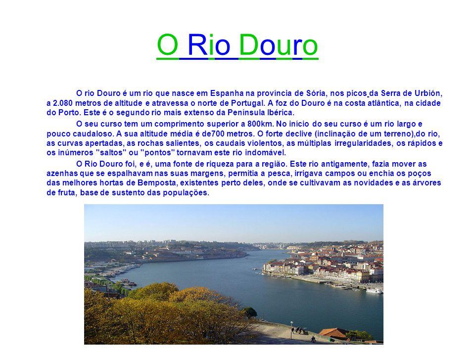 O rio Douro é um rio que nasce em Espanha na província de Sória, nos picos da Serra de Urbión, a 2.080 metros de altitude e atravessa o norte de Portu