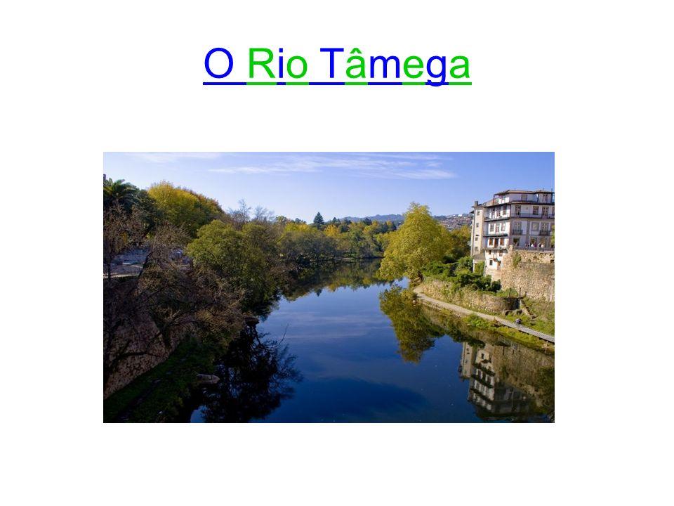 O Rio Tâmega é um afluente da margem direita do rio Douro, com aproveitamento da barragem do Torrão, barragem inaugurada em 1989, no concelho de Marco de Canaveses.