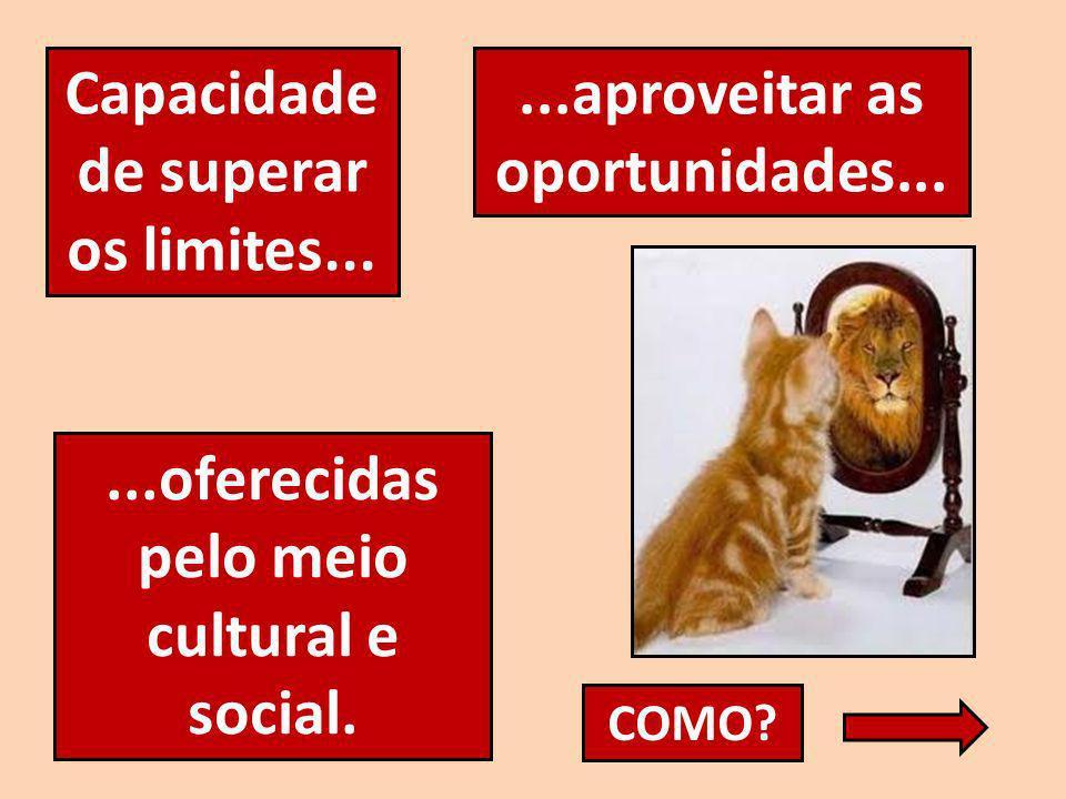 Capacidade de superar os limites......aproveitar as oportunidades......oferecidas pelo meio cultural e social. COMO?
