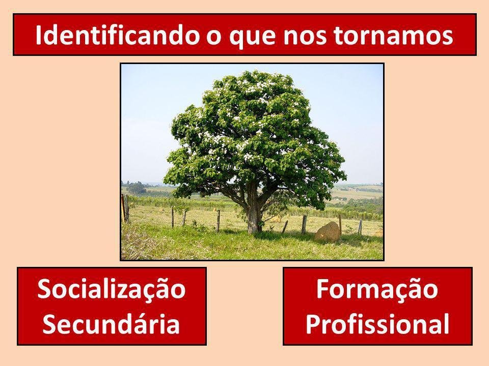 Identificando o que nos tornamos Socialização Secundária Formação Profissional