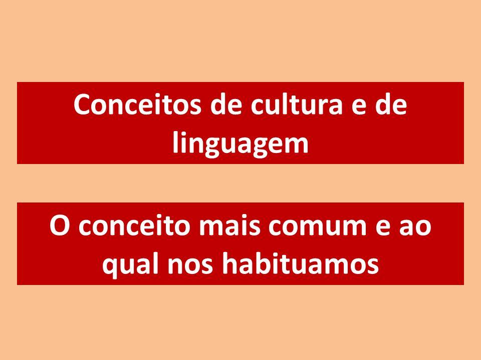 Conceitos de cultura e de linguagem O conceito mais comum e ao qual nos habituamos