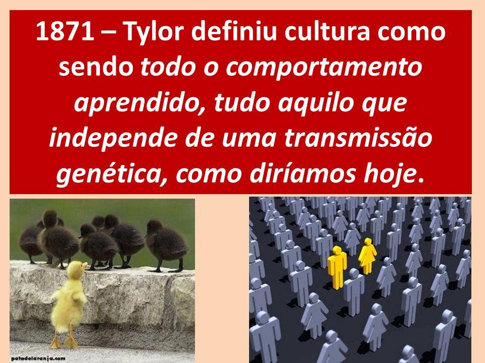 1871 – Tylor definiu cultura como sendo todo o comportamento aprendido, tudo aquilo que independe de uma transmissão genética, como diríamos hoje.