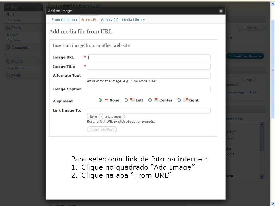 Para selecionar link de foto na internet: 1.Clique no quadrado Add Image 2.Clique na aba From URL