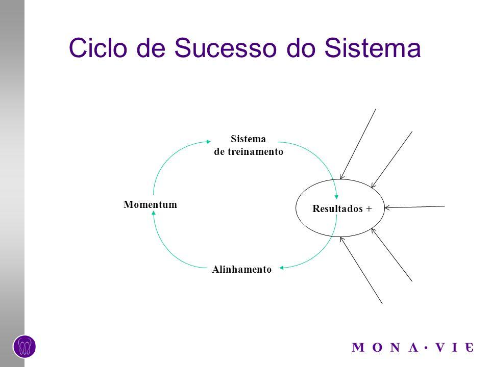 Ciclo de Sucesso do Sistema Sistema de treinamento Alinhamento Momentum Resultados +