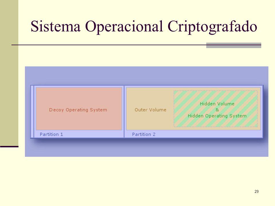 29 Sistema Operacional Criptografado