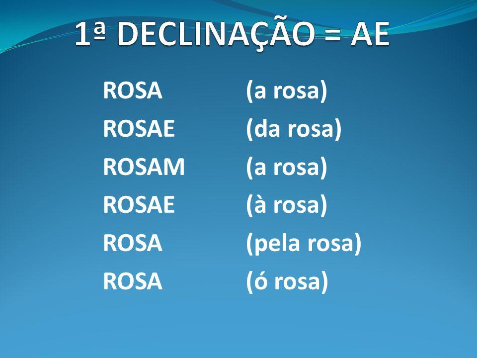 ANGEION, grego (angio) = vaso. Ex.: angiologia, angiogênese, angioma, angiografia www.afh.bio.br