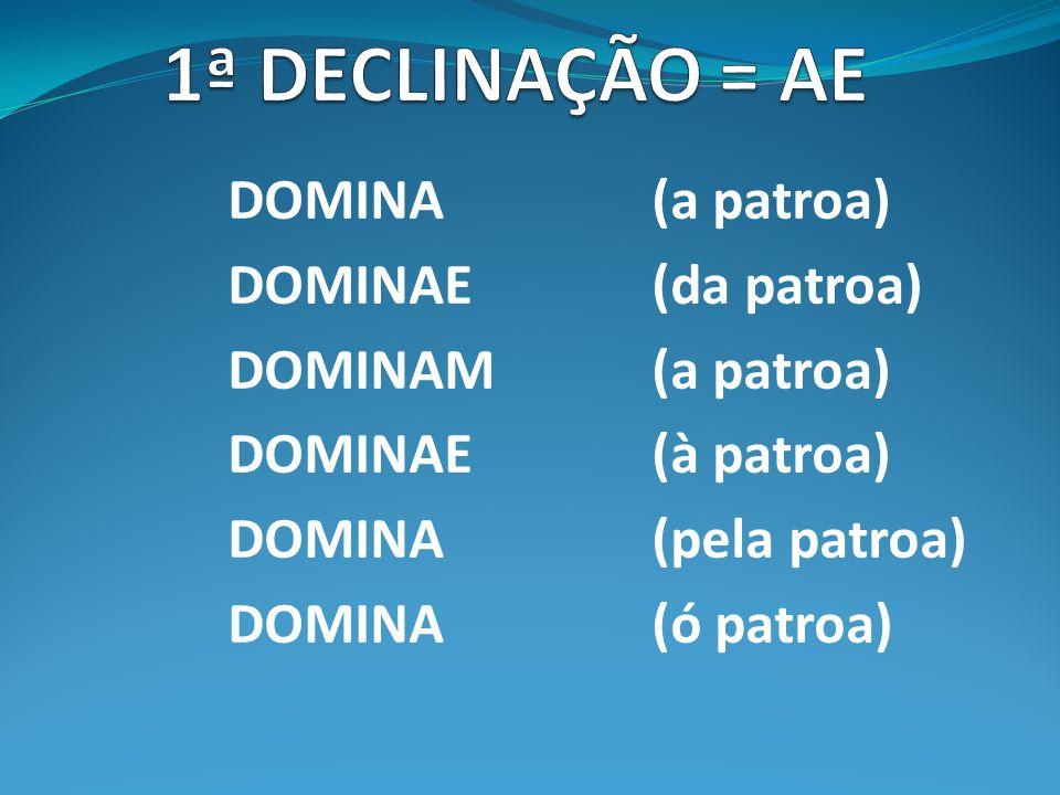 DOMINA (a patroa) DOMINAE(da patroa) DOMINAM(a patroa) DOMINAE(à patroa) DOMINA(pela patroa) DOMINA(ó patroa)