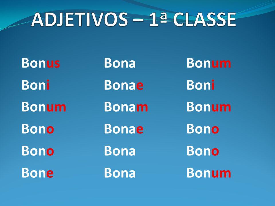 Bonus BonaBonum BoniBonaeBoni BonumBonamBonum BonoBonaeBono BonoBonaBono BoneBona Bonum
