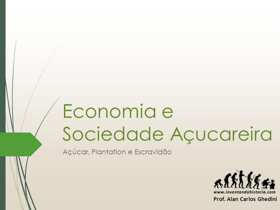Economia e Sociedade Açucareira Açúcar, Plantation e Escravidão Prof. Alan Carlos Ghedini