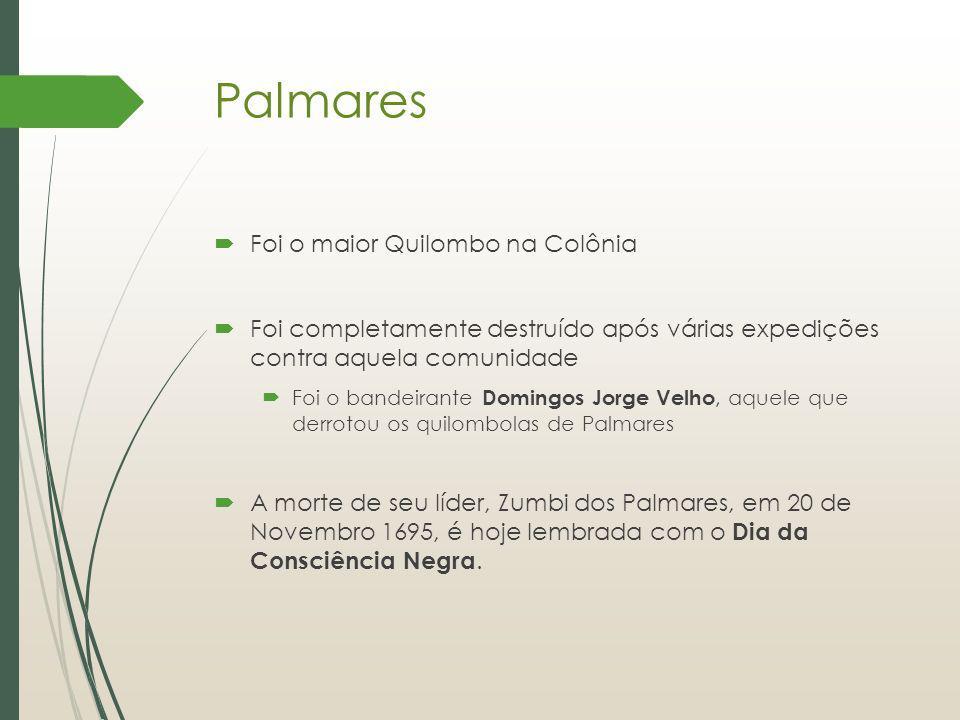 Palmares Foi o maior Quilombo na Colônia Foi completamente destruído após várias expedições contra aquela comunidade Foi o bandeirante Domingos Jorge