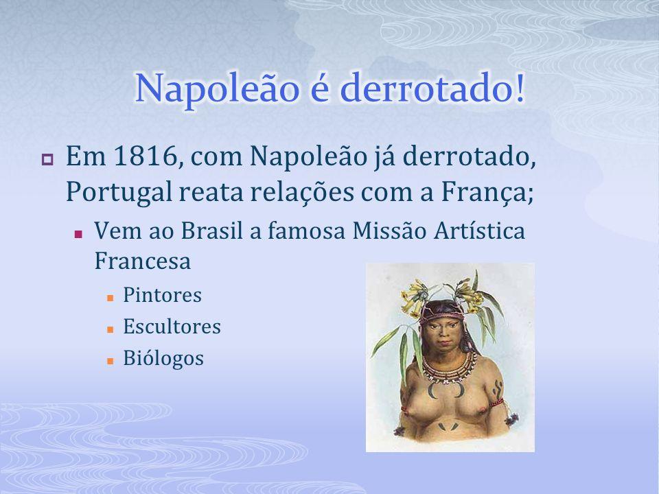 Em 1816, com Napoleão já derrotado, Portugal reata relações com a França; Vem ao Brasil a famosa Missão Artística Francesa Pintores Escultores Biólogo