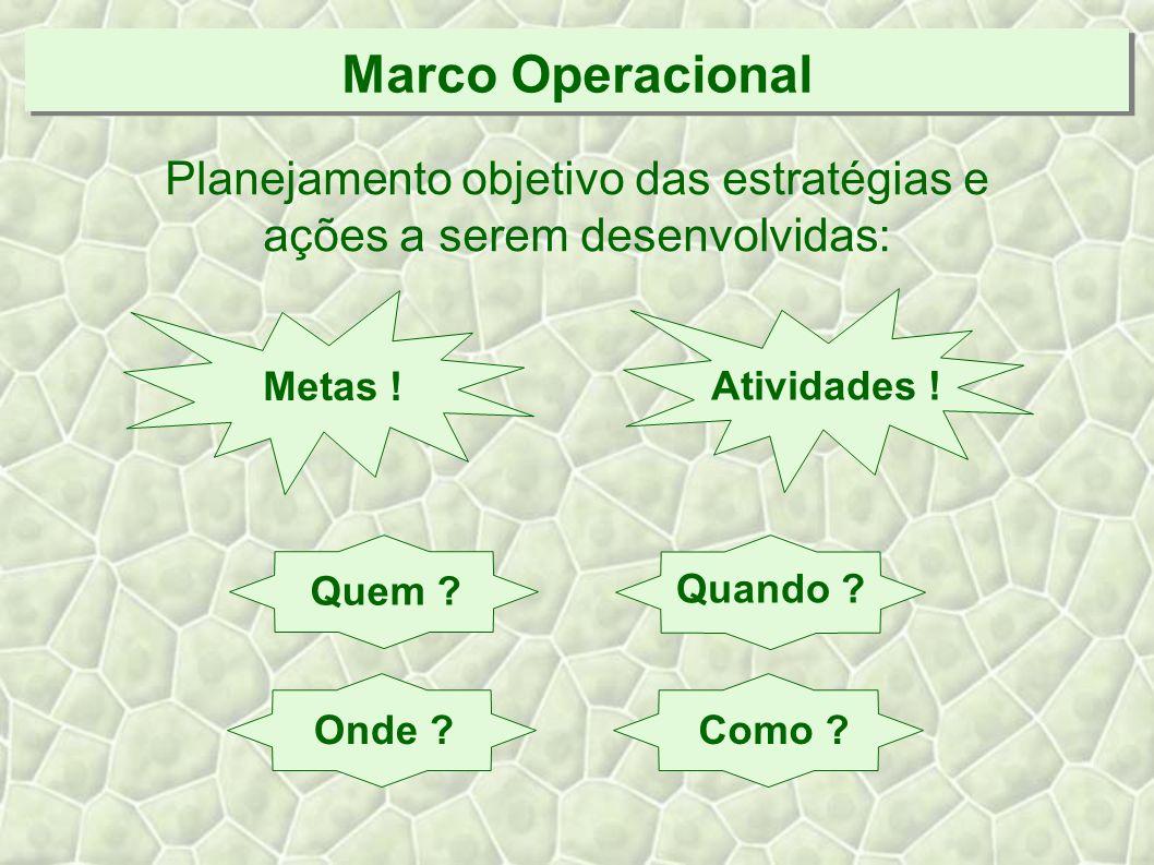 Marco Operacional Planejamento objetivo das estratégias e ações a serem desenvolvidas: Metas .