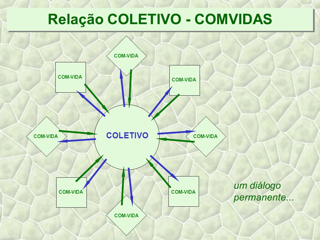 Relação COLETIVO - COMVIDAS COLETIVO COM-VIDA um diálogo permanente...
