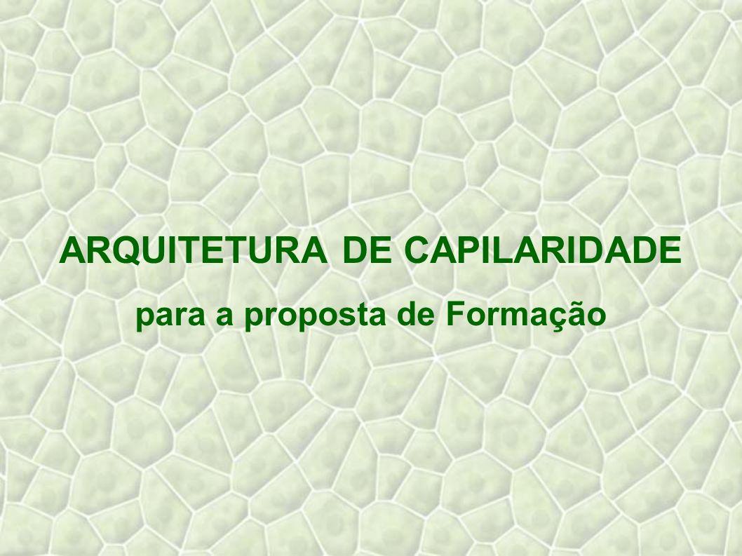 ARQUITETURA DE CAPILARIDADE para a proposta de Formação