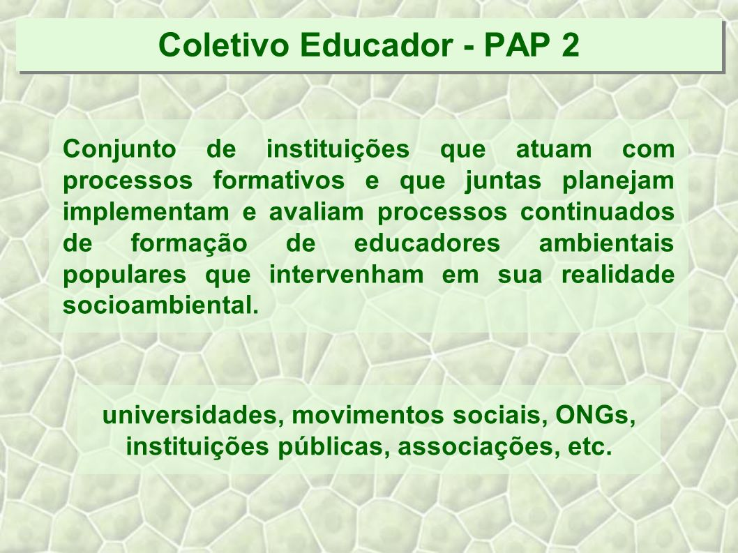 Coletivo Educador - PAP 2 Conjunto de instituições que atuam com processos formativos e que juntas planejam implementam e avaliam processos continuados de formação de educadores ambientais populares que intervenham em sua realidade socioambiental.