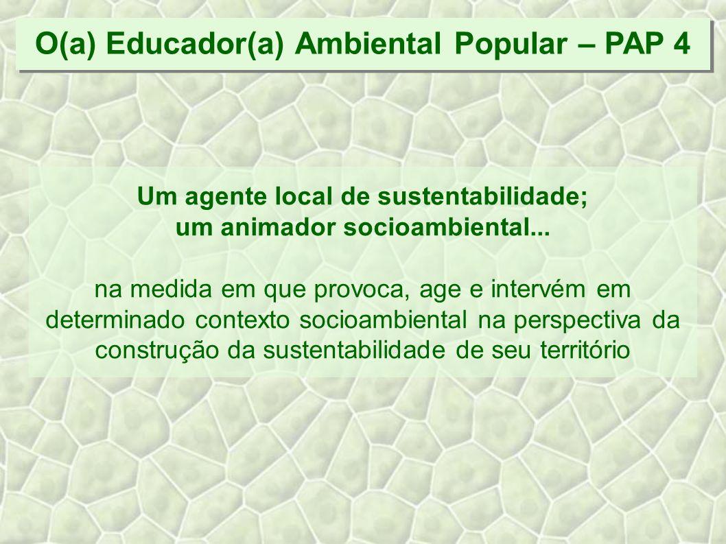 Um agente local de sustentabilidade; um animador socioambiental...