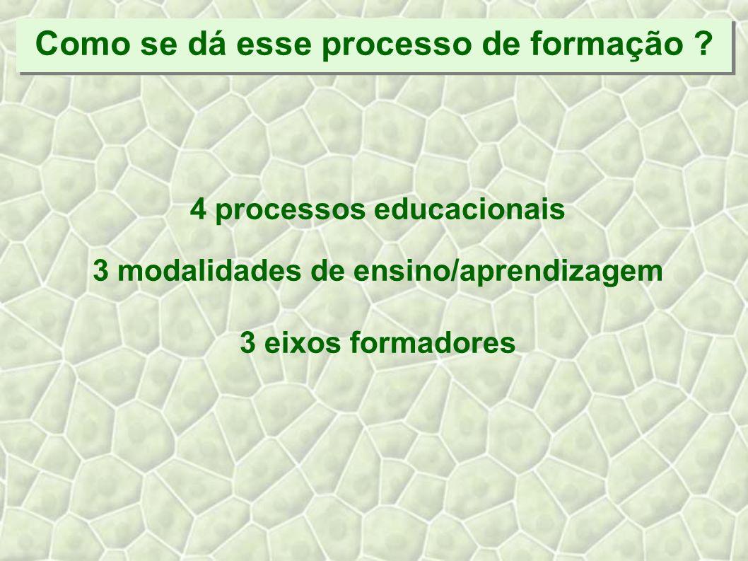 4 Processos Educacionais Educação por meio de estruturas educadoras Educação em foros e coletivos Formação de quadros Educomunicação ambiental