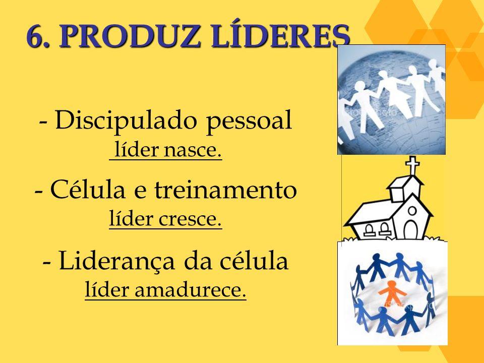 6. PRODUZ LÍDERES - Discipulado pessoal líder nasce. - Célula e treinamento líder cresce. - Liderança da célula líder amadurece.