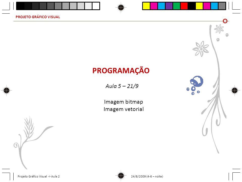 PROJETO GRÁFICO VISUAL Projeto Gráfico Visual -> Aula 2 24/8/2009 (4-6 – noite) PROGRAMAÇÃO Aula 5 – 21/9 Imagem bitmap Imagem vetorial