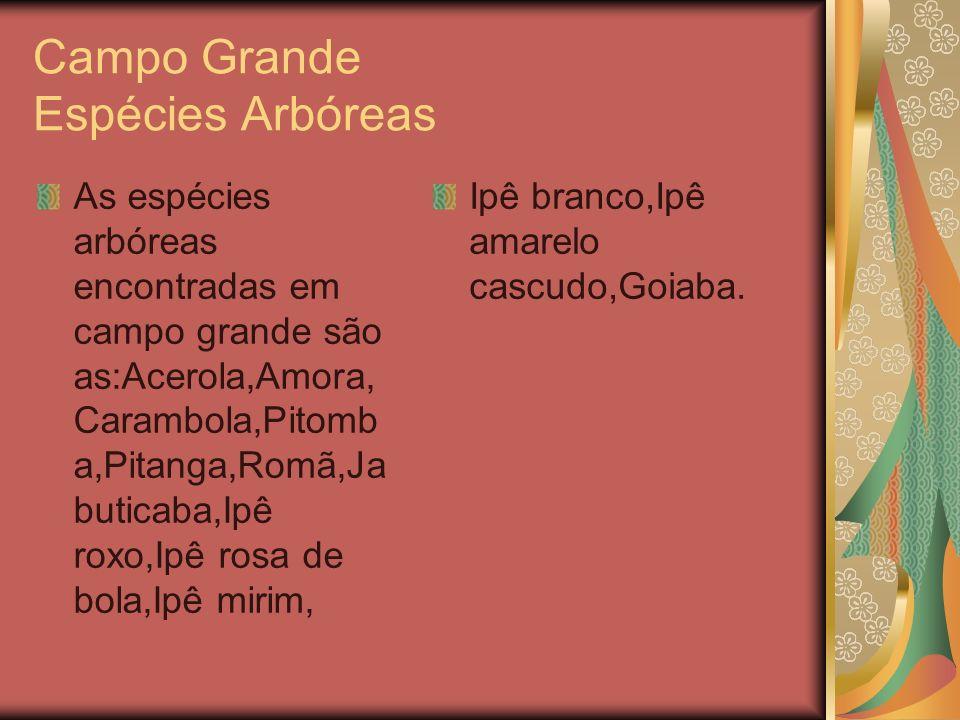 Campo Grande Espécies Arbóreas As espécies arbóreas encontradas em campo grande são as:Acerola,Amora, Carambola,Pitomb a,Pitanga,Romã,Ja buticaba,Ipê