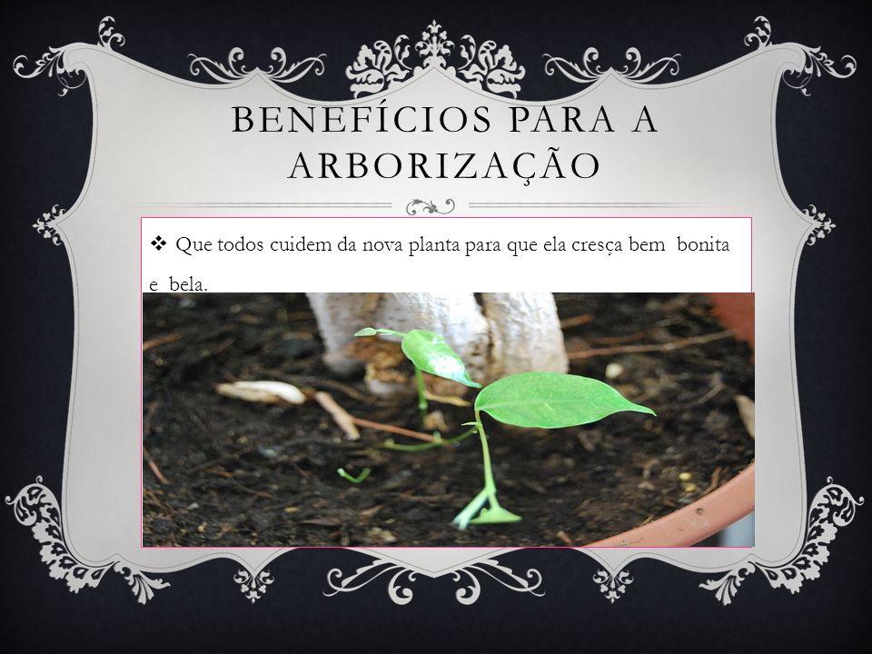 BENEFÍCIOS PARA A ARBORIZAÇÃO Que todos cuidem da nova planta para que ela cresça bem bonita e bela.