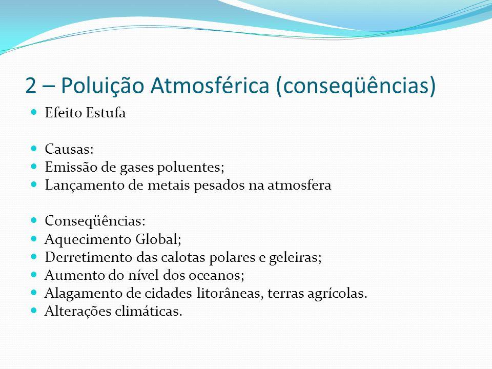 2 – Poluição Atmosférica (conseqüências) Efeito Estufa Causas: Emissão de gases poluentes; Lançamento de metais pesados na atmosfera Conseqüências: Aquecimento Global; Derretimento das calotas polares e geleiras; Aumento do nível dos oceanos; Alagamento de cidades litorâneas, terras agrícolas.