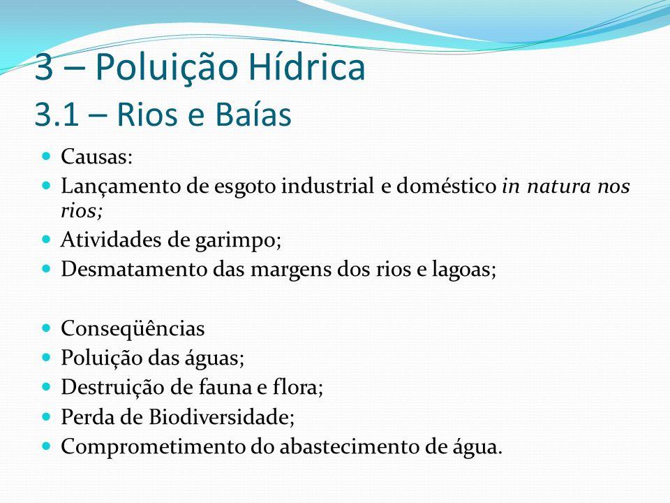 3 – Poluição Hídrica 3.1 – Rios e Baías Causas: Lançamento de esgoto industrial e doméstico in natura nos rios; Atividades de garimpo; Desmatamento das margens dos rios e lagoas; Conseqüências Poluição das águas; Destruição de fauna e flora; Perda de Biodiversidade; Comprometimento do abastecimento de água.