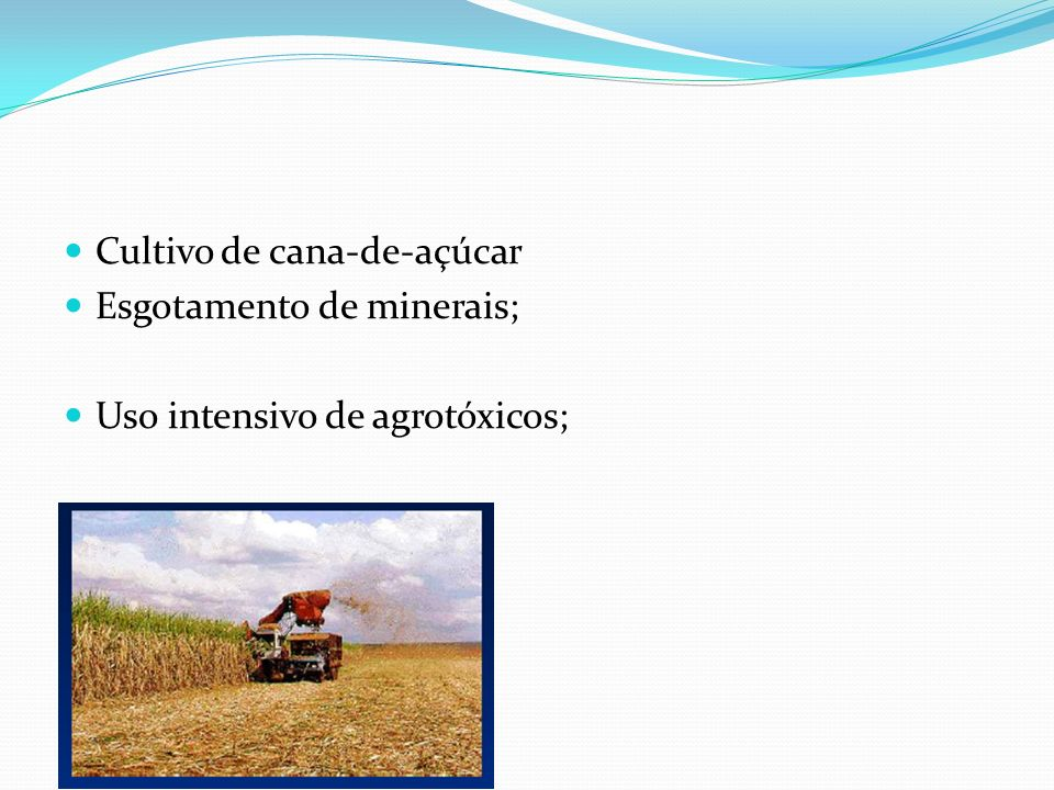 Cultivo de cana-de-açúcar Esgotamento de minerais; Uso intensivo de agrotóxicos;