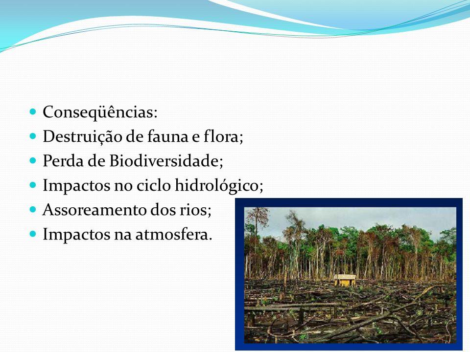 Conseqüências: Destruição de fauna e flora; Perda de Biodiversidade; Impactos no ciclo hidrológico; Assoreamento dos rios; Impactos na atmosfera.