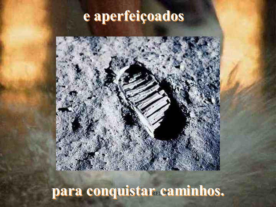 BY LINCOLN FERREIRA Nossos primeiros passos foram treinados...