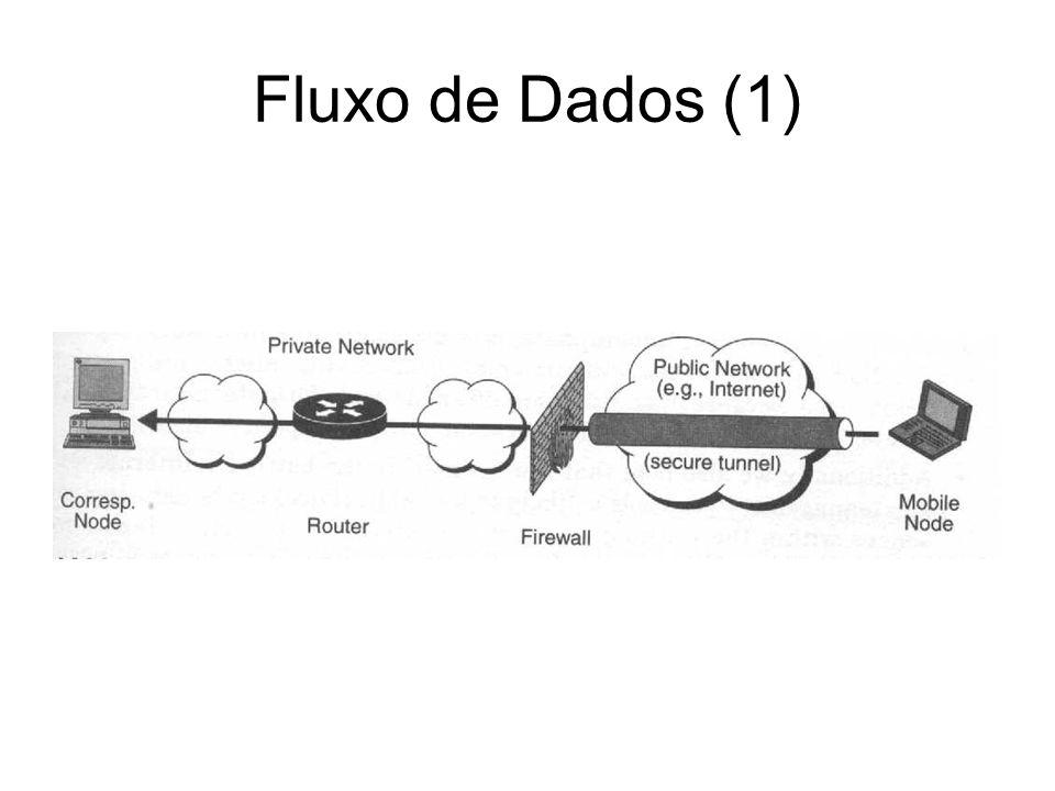 Fluxo de Dados (2)