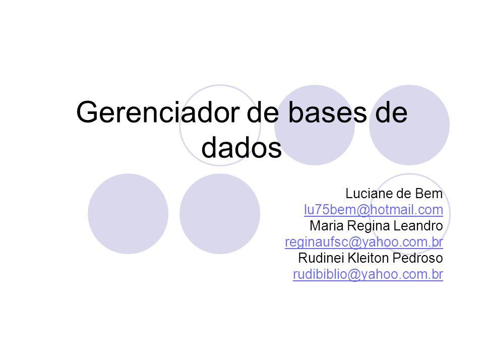 Gerenciador de bases de dados Luciane de Bem lu75bem@hotmail.com Maria Regina Leandro reginaufsc@yahoo.com.br Rudinei Kleiton Pedroso rudibiblio@yahoo