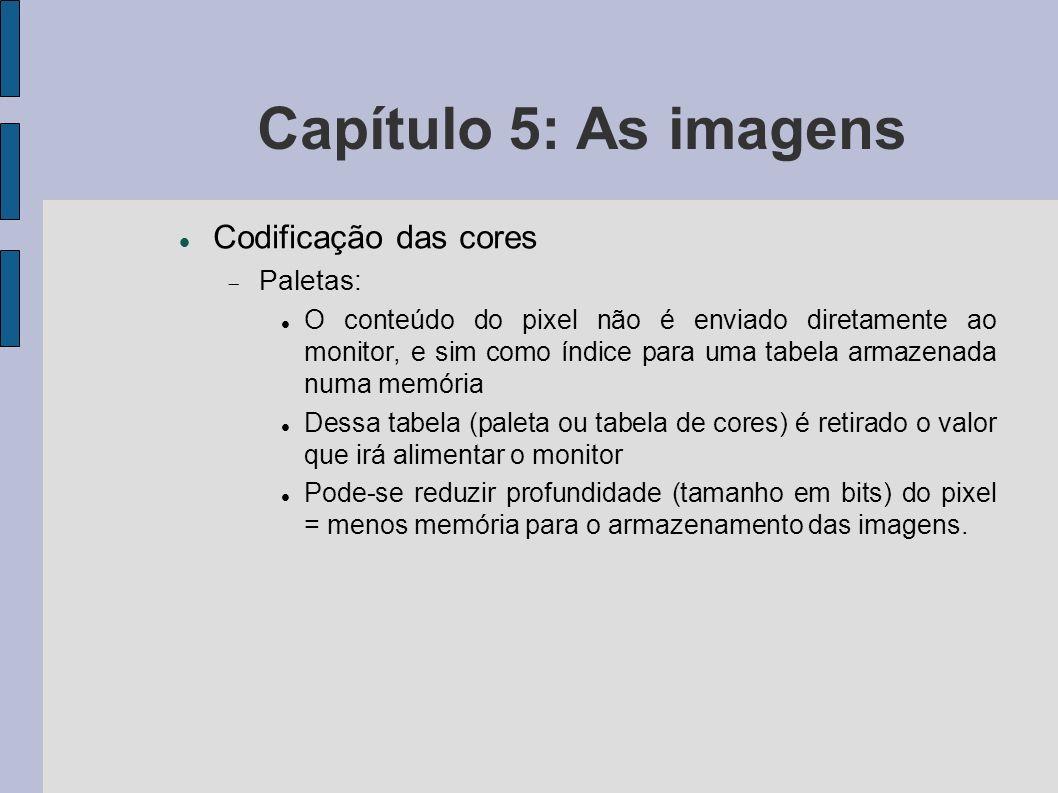 Capítulo 5: As imagens Codificação das cores Paletas: O conteúdo do pixel não é enviado diretamente ao monitor, e sim como índice para uma tabela arma