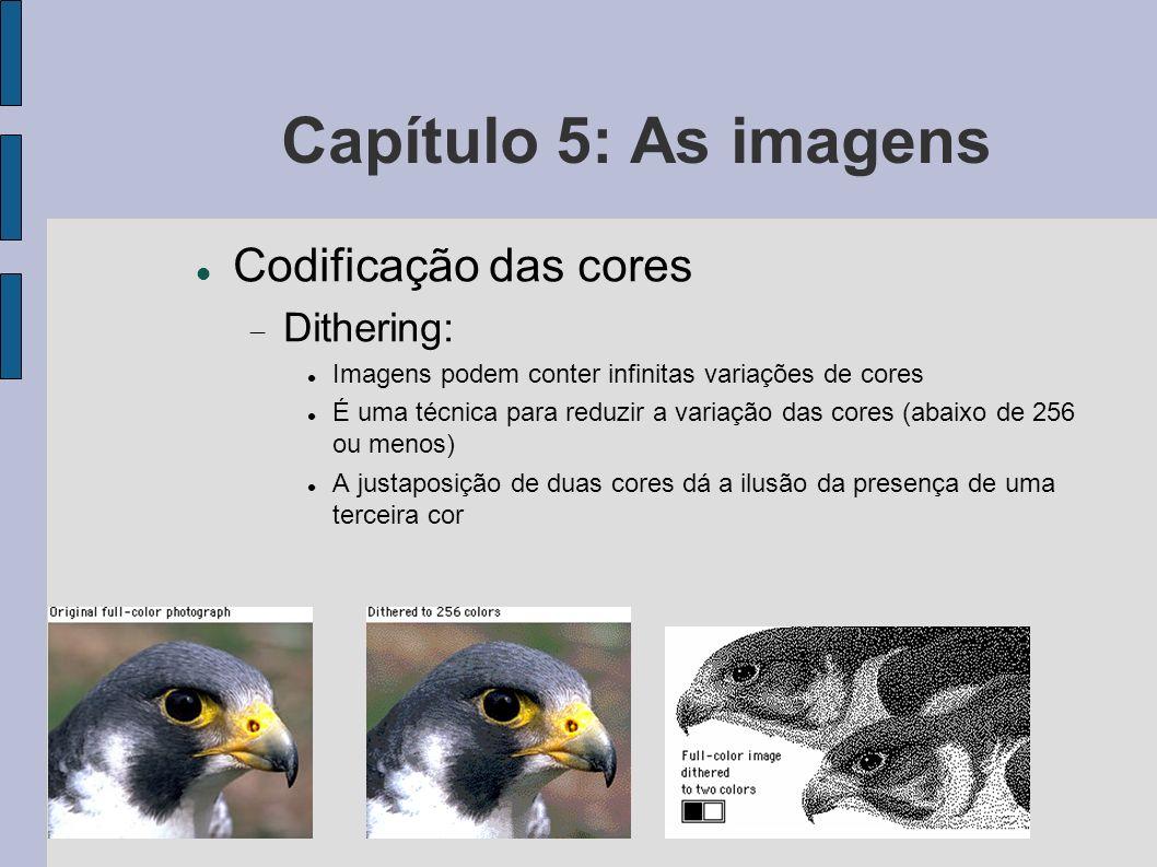 Capítulo 5: As imagens Codificação das cores Dithering: Imagens podem conter infinitas variações de cores É uma técnica para reduzir a variação das co