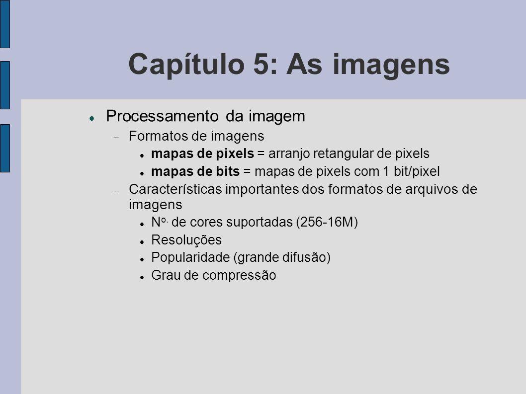 Capítulo 5: As imagens Processamento da imagem Formatos de imagens mapas de pixels = arranjo retangular de pixels mapas de bits = mapas de pixels com