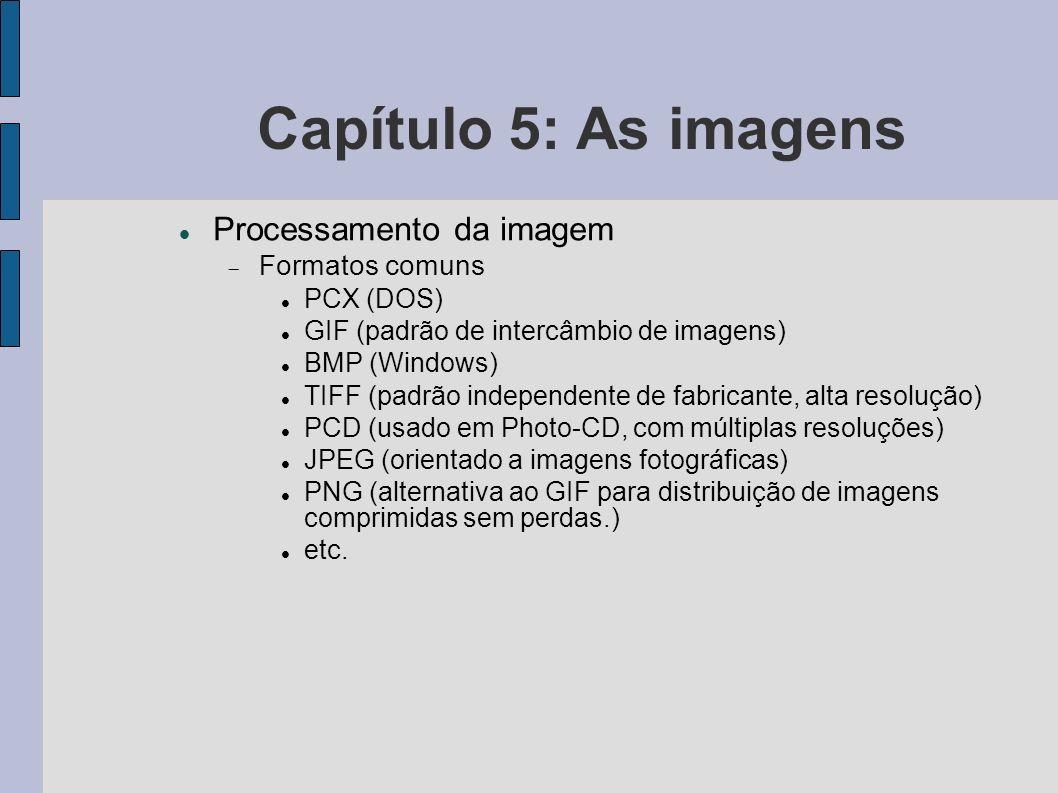 Capítulo 5: As imagens Processamento da imagem Formatos comuns PCX (DOS) GIF (padrão de intercâmbio de imagens) BMP (Windows) TIFF (padrão independent