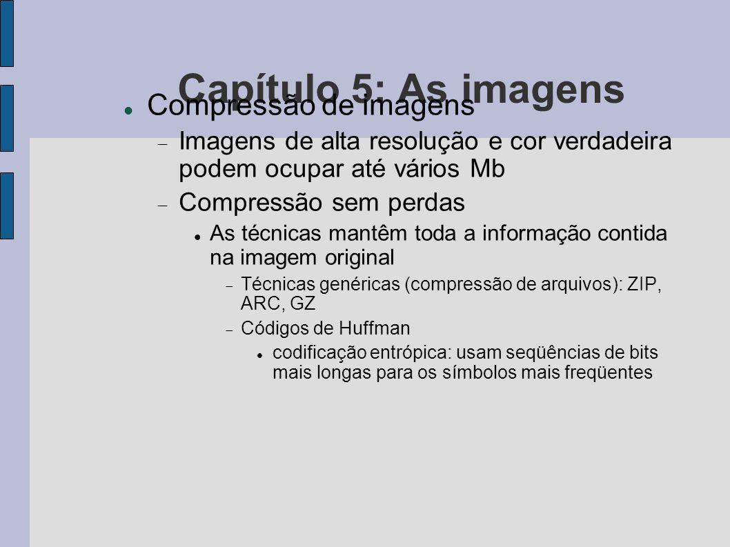 Capítulo 5: As imagens Compressão de imagens Imagens de alta resolução e cor verdadeira podem ocupar até vários Mb Compressão sem perdas As técnicas m