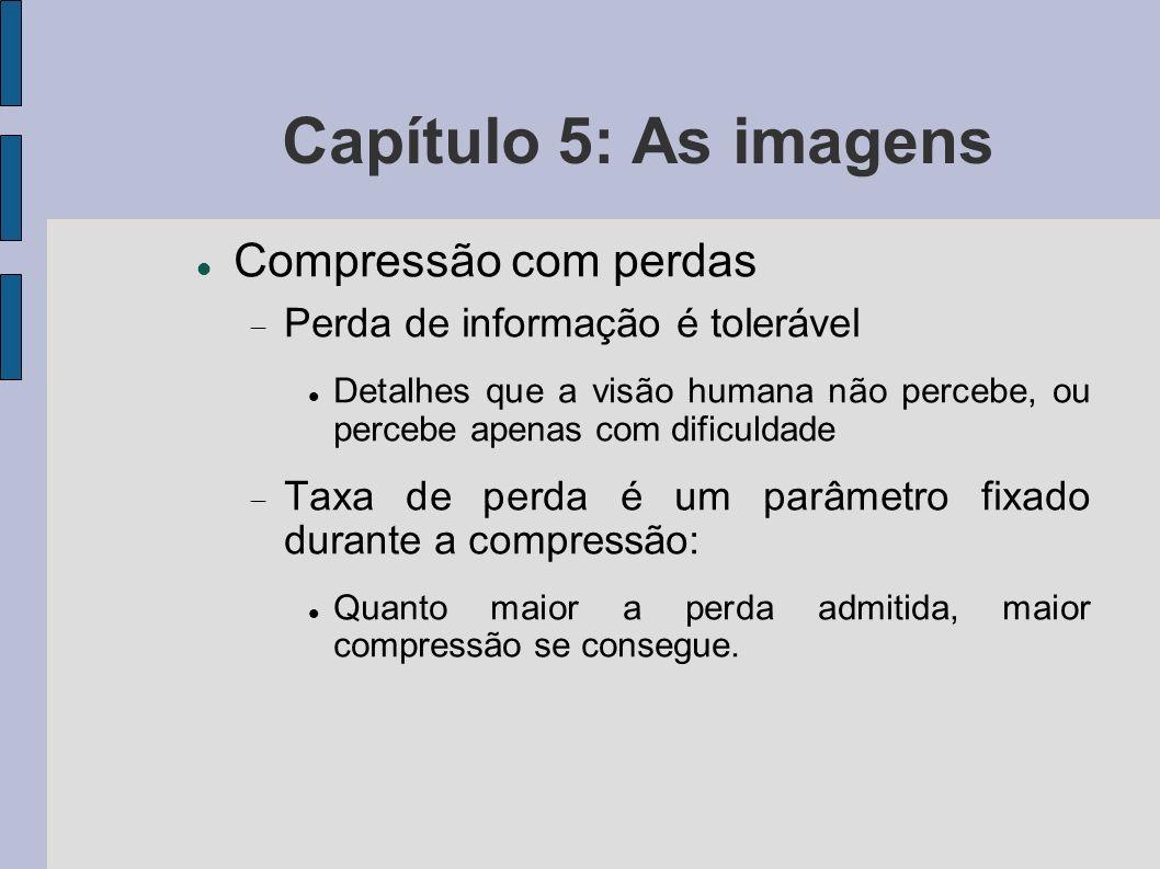 Capítulo 5: As imagens Compressão com perdas Perda de informação é tolerável Detalhes que a visão humana não percebe, ou percebe apenas com dificuldad