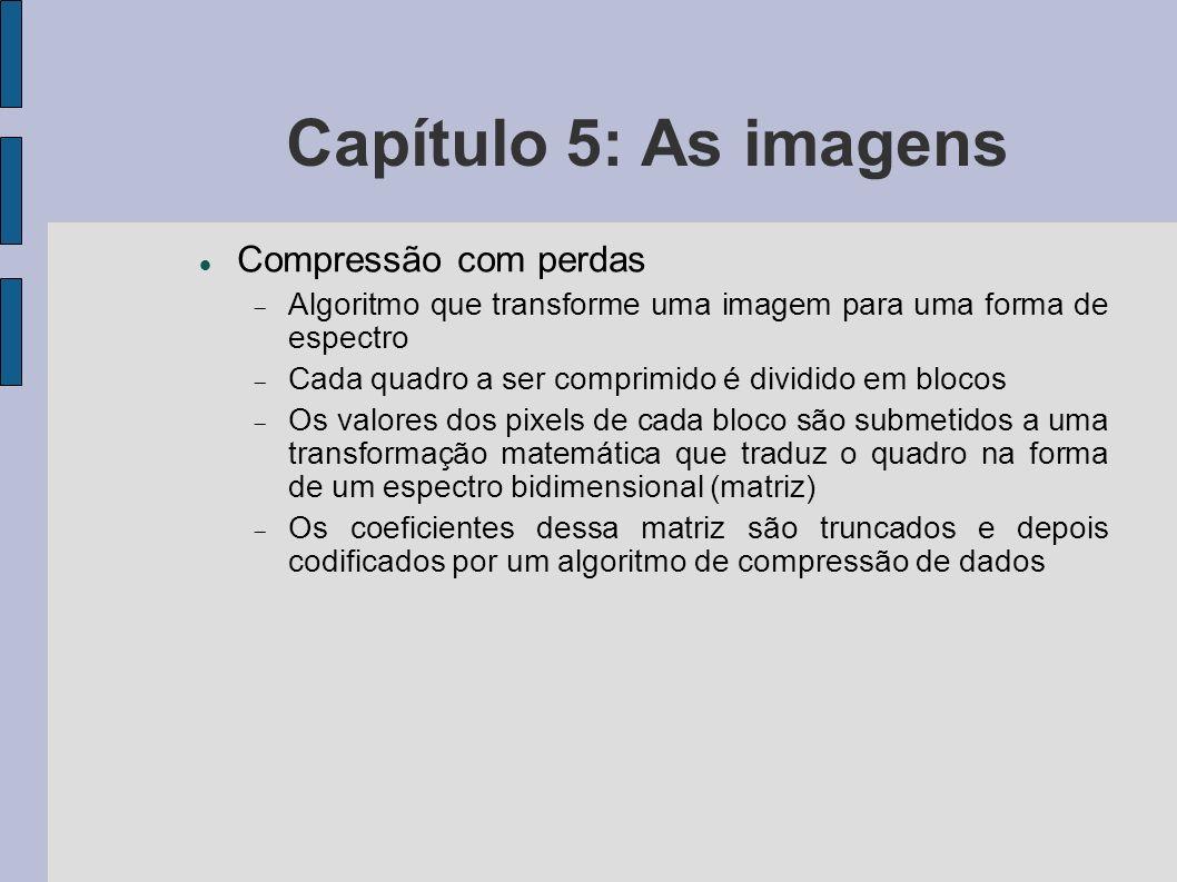 Capítulo 5: As imagens Compressão com perdas Algoritmo que transforme uma imagem para uma forma de espectro Cada quadro a ser comprimido é dividido em